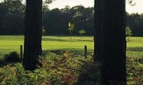 Moors Valley GC